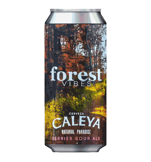 Caleya Forest Vibes Sour Ale